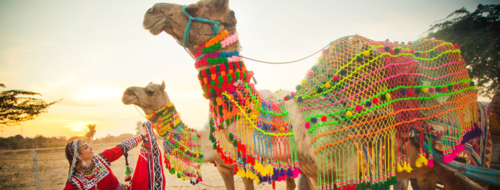 Rajasthan – Tempting Reasons to Visit the Country's Most Culturally Rich Destination